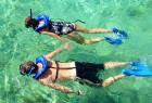 Wisata Menyelam / Diving Program
