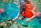 Lombok Diving Tour
